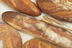 365 pains dans une galette