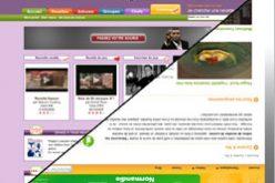 Recettes et vidéo sur le net