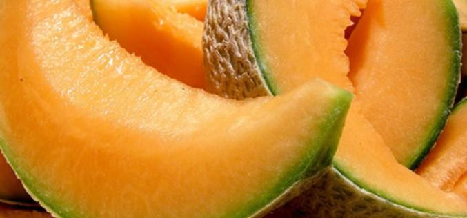 Produit de saison : mangez du melon