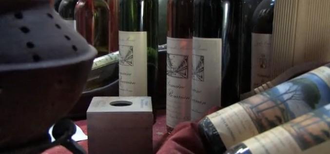 Rencontre viticole : Domaine du Bourrian