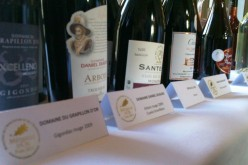 Résultats des Prix d'Excellence du Concours Général Agricole 2012