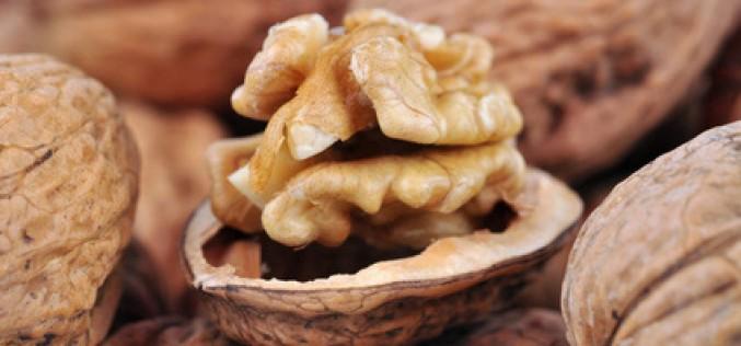Recette de saison : chou vert aux noix