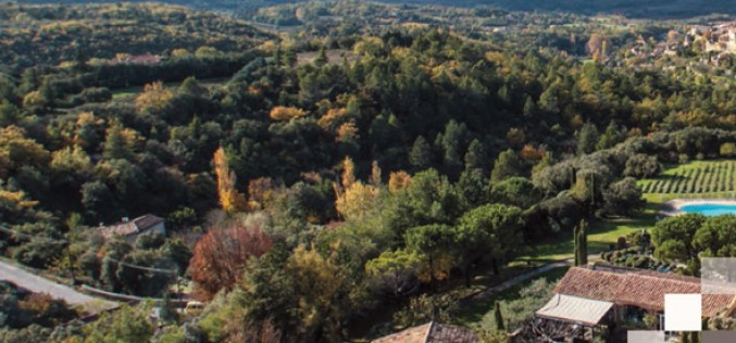 En bref : Edouard Loubet et la Confrérie de la Pomme de Terre de Pertuis