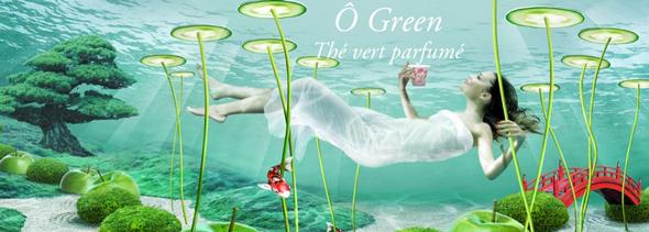 Green pour machine special t - Dosette pour special t ...