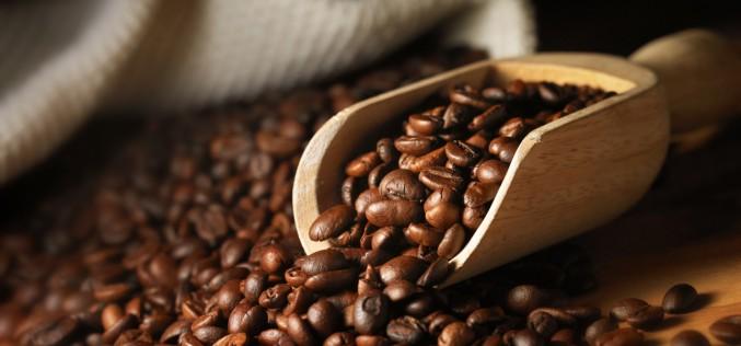 Le choix du café en grain : mélange ou pure origine ?