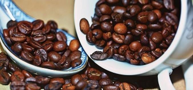 Café en grains ou moulu, une boutique en ligne à découvrir
