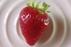 La fraise en finale
