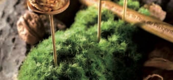 Recette simple de noix : sucettes fromagères aux Noix du Périgord