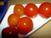 qhuick_tomatoes5.jpg