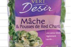 """Salades """"Vert Désir"""""""