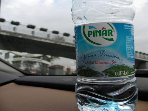 1010_Pinar
