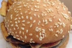 Le Canard Huppé : du food truck au food duck