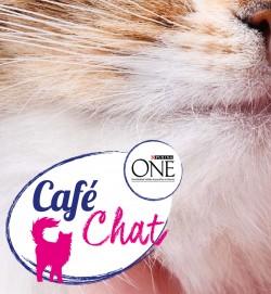 0615_CafeChat