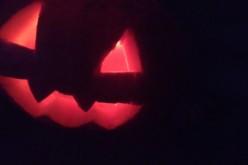 Halloween : décorations et frissons