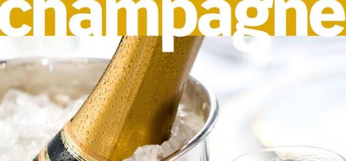 Livre : guide de l'amateur de Champagne