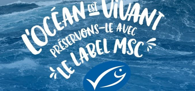 Quelques questions sur le label MSC